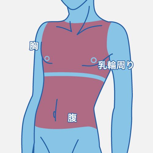 胸パーツの説明画像