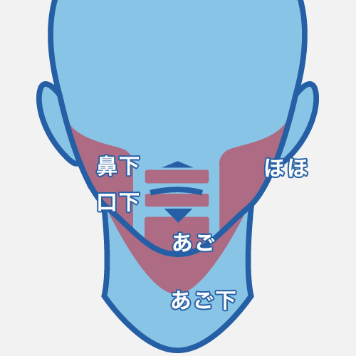ひげパーツの説明画像