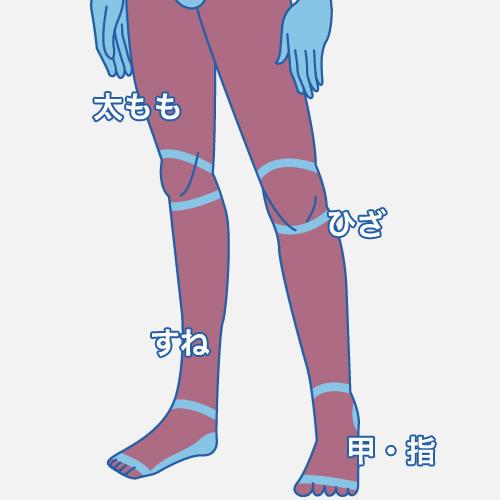 脚パーツの説明画像
